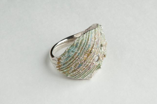 Spine Ring